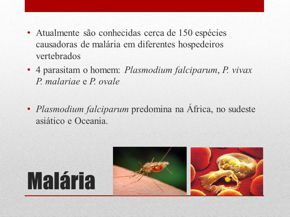 Malária Atualmente são conhecidas cerca de 150 espécies causadoras de malária em diferentes hospedeiros vertebrados 4 parasitam o homem: Plasmodium fa