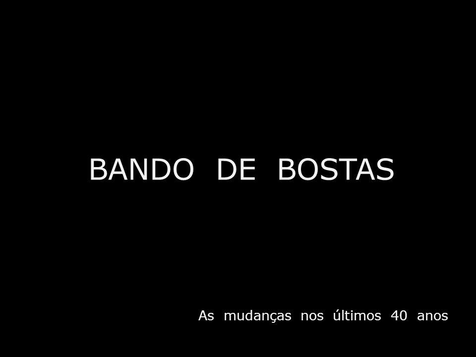 BANDO DE BOSTAS As mudanças nos últimos 40 anos