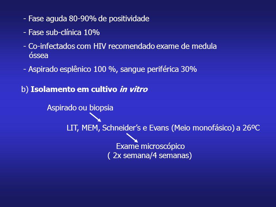 - Fase aguda 80-90% de positividade - Fase sub-clínica 10% - Co-infectados com HIV recomendado exame de medula óssea - Aspirado esplênico 100 %, sangu