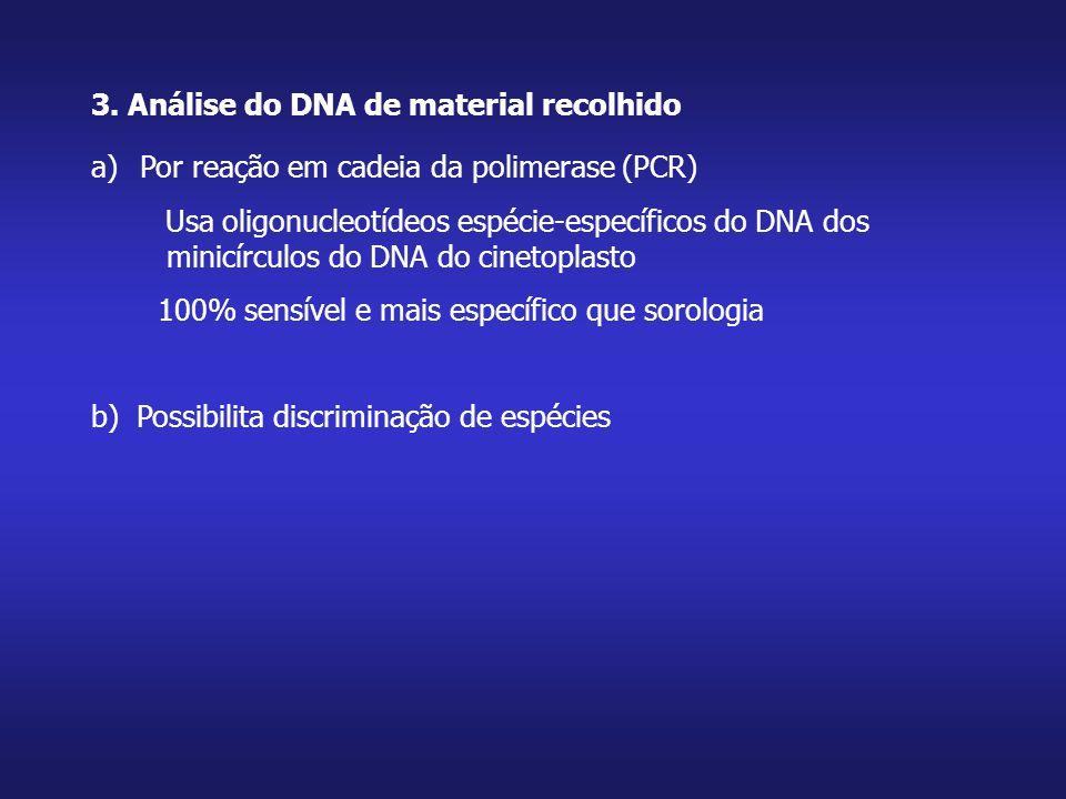3. Análise do DNA de material recolhido a) Por reação em cadeia da polimerase (PCR) Usa oligonucleotídeos espécie-específicos do DNA dos minicírculos