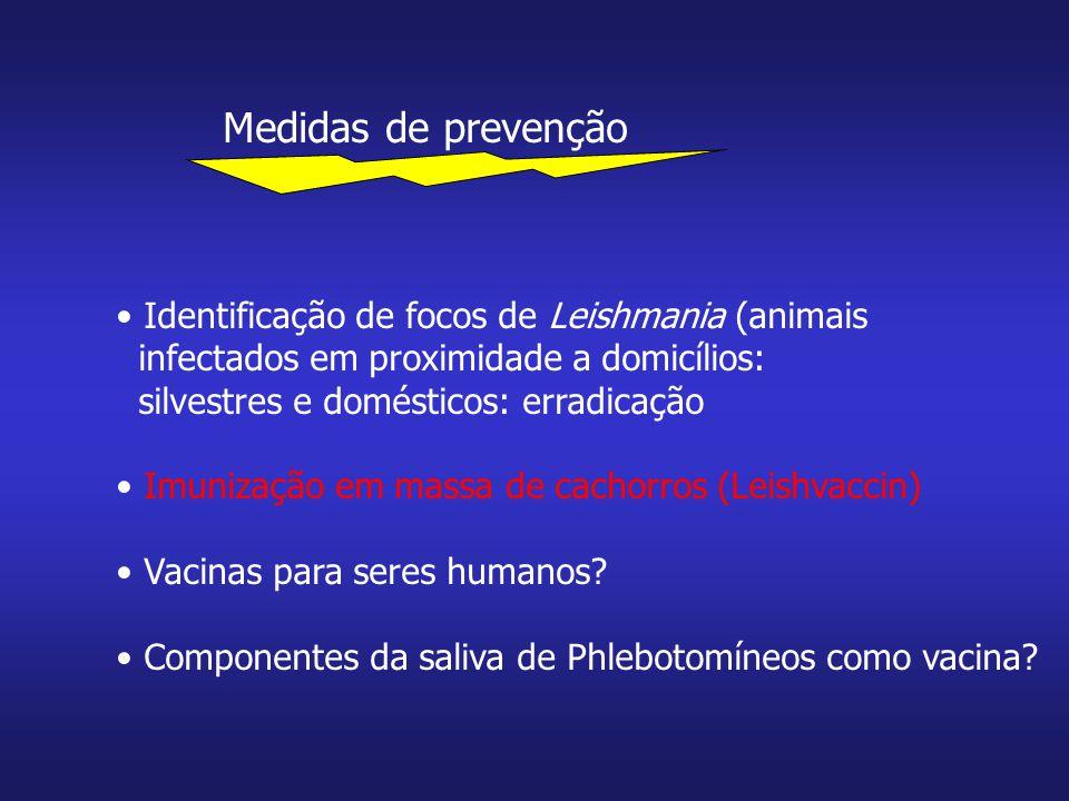 Medidas de prevenção Identificação de focos de Leishmania (animais infectados em proximidade a domicílios: silvestres e domésticos: erradicação Imuniz
