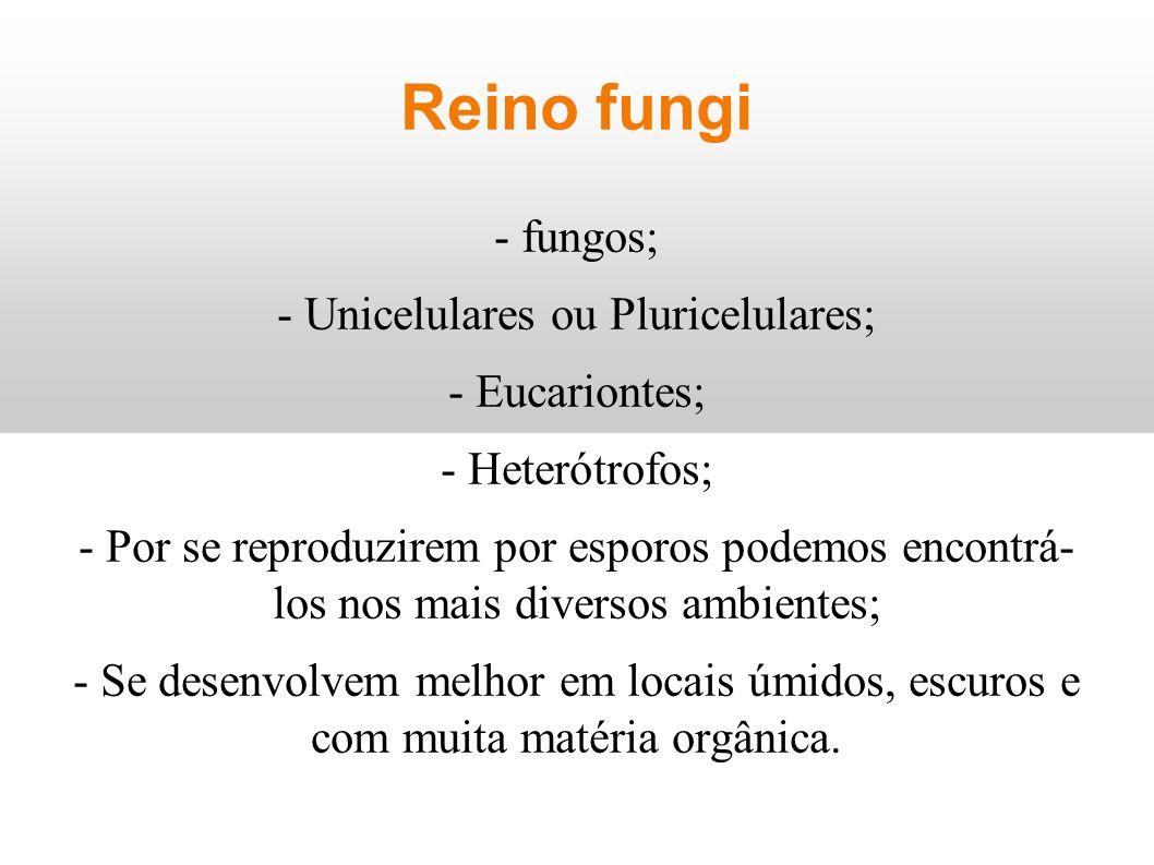 Reino fungi - fungos; - Unicelulares ou Pluricelulares; - Eucariontes; - Heterótrofos; - Por se reproduzirem por esporos podemos encontrá- los nos mai