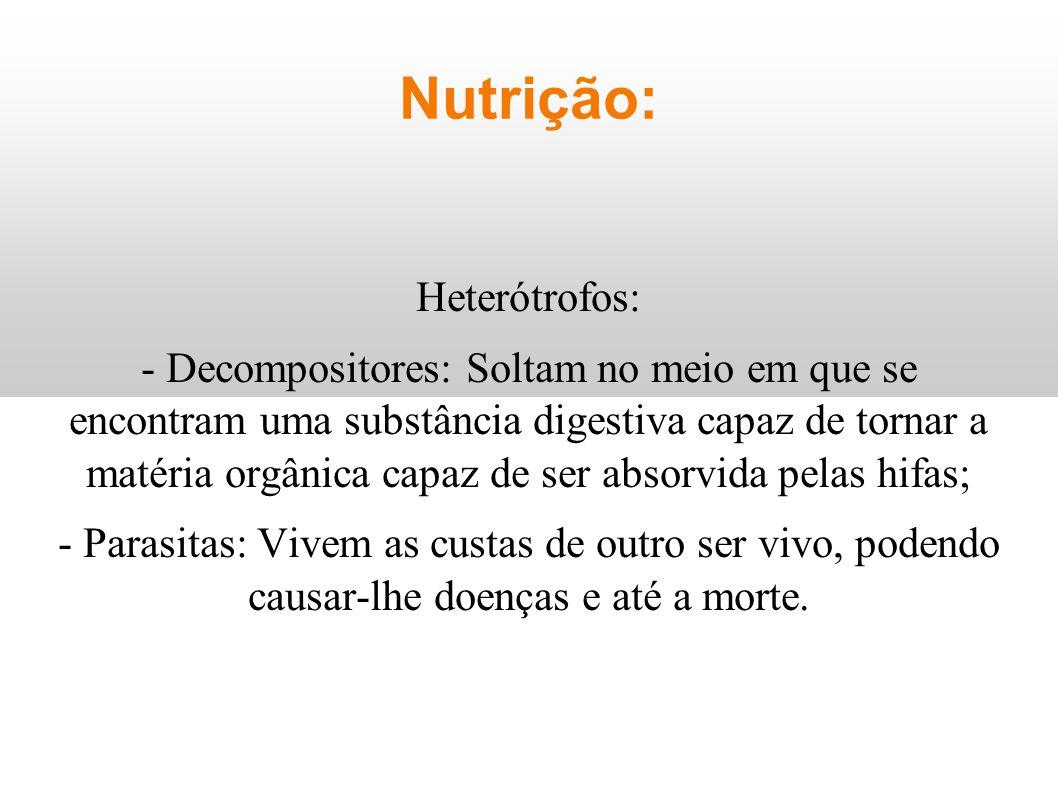 Nutrição: Heterótrofos: - Decompositores: Soltam no meio em que se encontram uma substância digestiva capaz de tornar a matéria orgânica capaz de ser