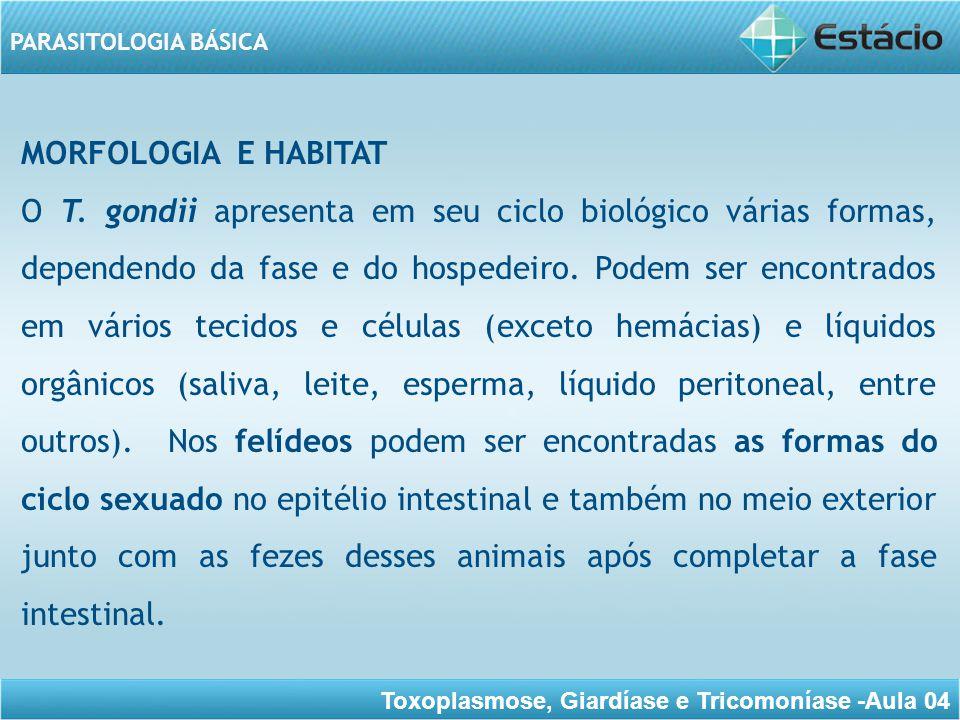 Toxoplasmose, Giardíase e Tricomoníase -Aula 04 PARASITOLOGIA BÁSICA As principais formas que o parasito apresenta durante o ciclo evolutivo são: taquizoítos, bradizoítos e oocistos (contendo os esporozoítos).