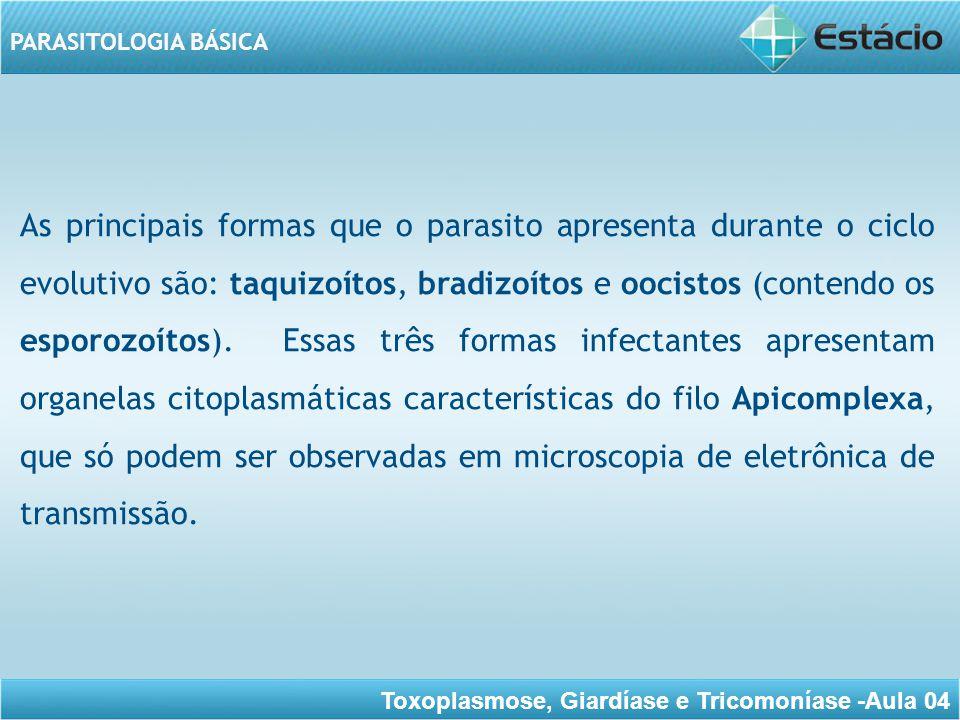 Toxoplasmose, Giardíase e Tricomoníase -Aula 04 PARASITOLOGIA BÁSICA Observa as figuras para conhecer melhor as características desse protozoário.