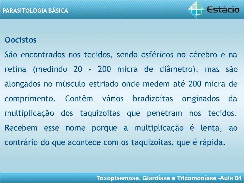 Toxoplasmose, Giardíase e Tricomoníase -Aula 04 PARASITOLOGIA BÁSICA Essa forma ocorre durante a fase crônica da infecção.