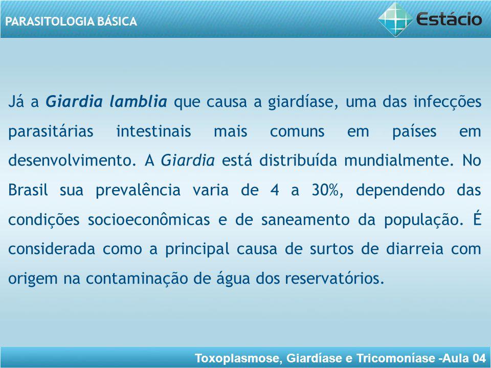 Toxoplasmose, Giardíase e Tricomoníase -Aula 04 PARASITOLOGIA BÁSICA E, falaremos também do Trichomonas vaginalis que causa uma doença infectocontagiosa do sistema geniturinário do homem e da mulher, sendo considerada uma doença sexualmente transmissível.