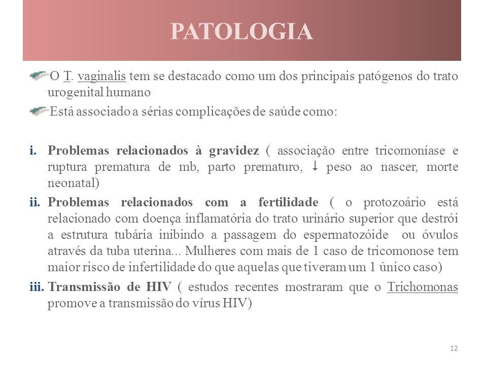 PATOLOGIA O T. vaginalis tem se destacado como um dos principais patógenos do trato urogenital humano Está associado a sérias complicações de saúde co