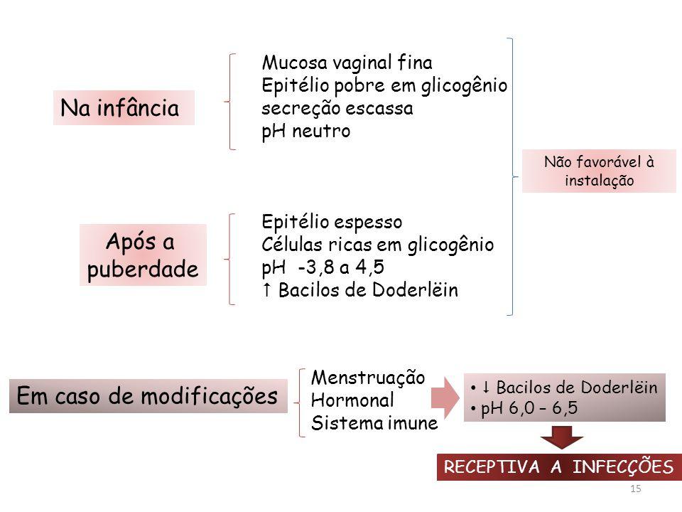 15 Mucosa vaginal fina Epitélio pobre em glicogênio secreção escassa pH neutro Epitélio espesso Células ricas em glicogênio pH -3,8 a 4,5  Bacilos de