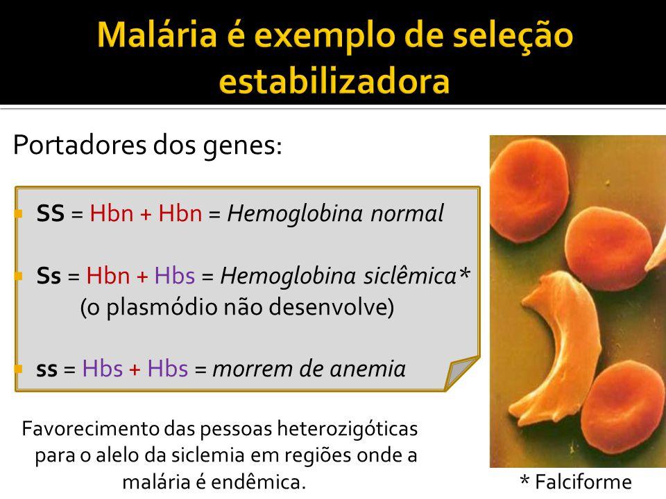 Portadores dos genes:  SS = Hbn + Hbn = Hemoglobina normal  Ss = Hbn + Hbs = Hemoglobina siclêmica* (o plasmódio não desenvolve)  ss = Hbs + Hbs = morrem de anemia Favorecimento das pessoas heterozigóticas para o alelo da siclemia em regiões onde a malária é endêmica.