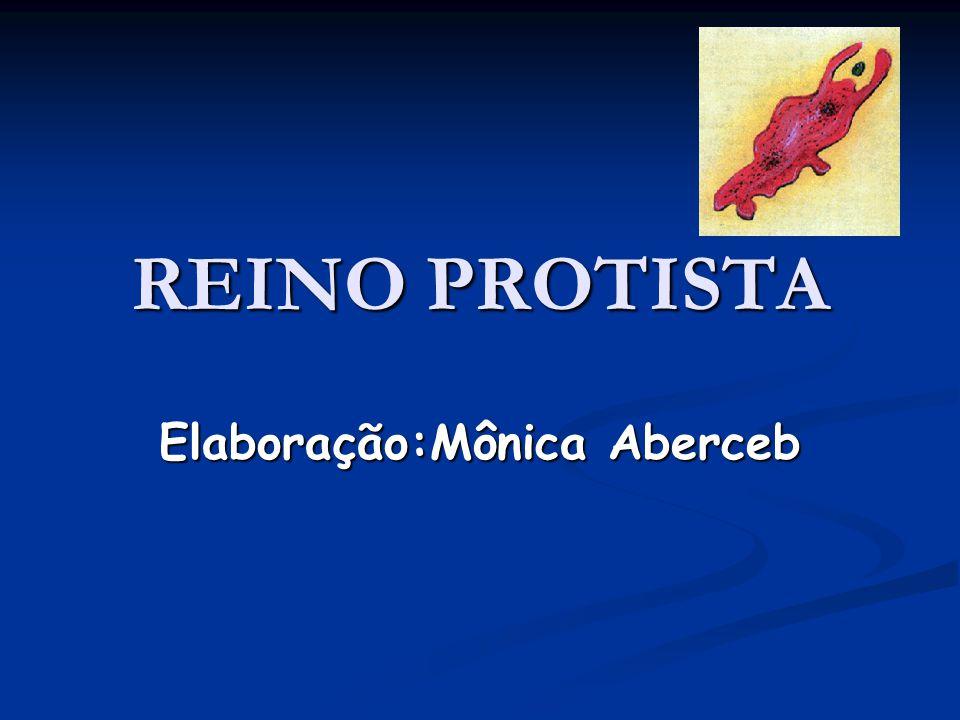 REINO PROTISTA Elaboração:Mônica Aberceb
