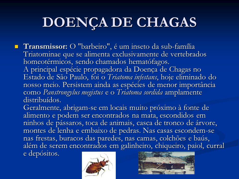 DOENÇA DE CHAGAS Transmissor: O barbeiro , é um inseto da sub-família Triatominae que se alimenta exclusivamente de vertebrados homeotérmicos, sendo chamados hematófagos.