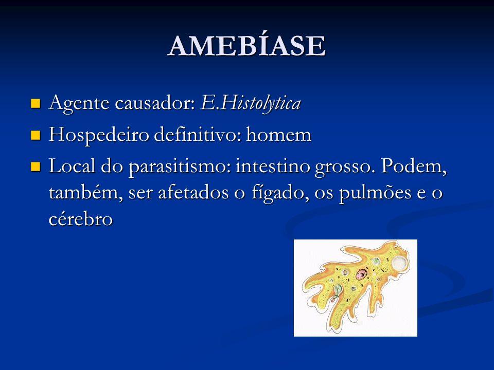 AMEBÍASE Agente causador: E.Histolytica Agente causador: E.Histolytica Hospedeiro definitivo: homem Hospedeiro definitivo: homem Local do parasitismo: intestino grosso.
