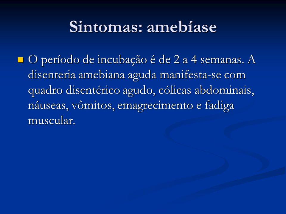Sintomas: amebíase O período de incubação é de 2 a 4 semanas.