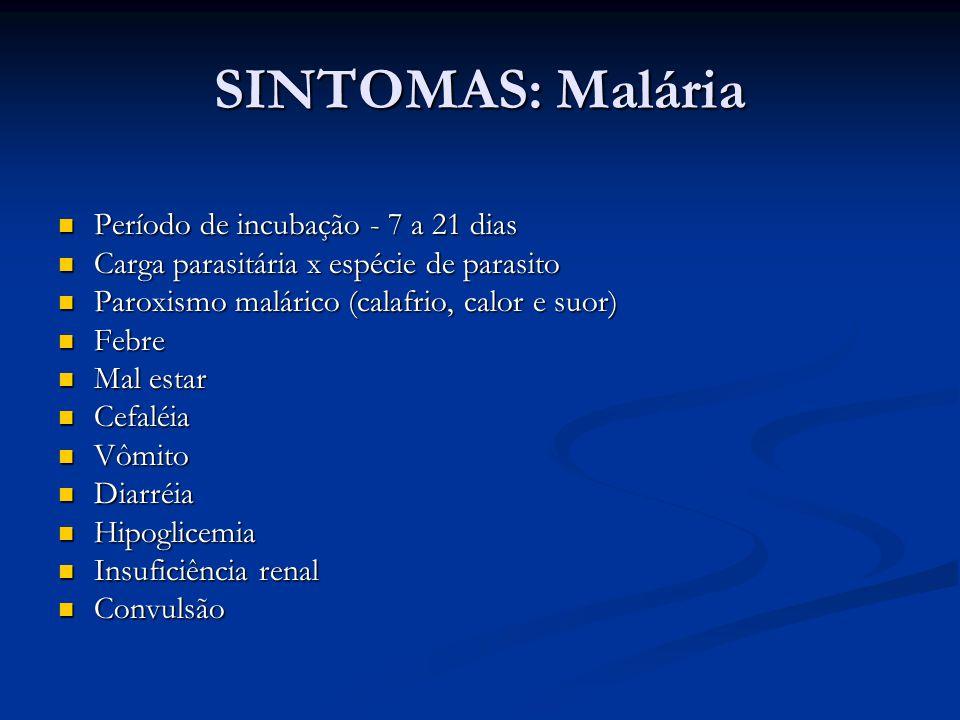 SINTOMAS: Malária Período de incubação - 7 a 21 dias Período de incubação - 7 a 21 dias Carga parasitária x espécie de parasito Carga parasitária x espécie de parasito Paroxismo malárico (calafrio, calor e suor) Paroxismo malárico (calafrio, calor e suor) Febre Febre Mal estar Mal estar Cefaléia Cefaléia Vômito Vômito Diarréia Diarréia Hipoglicemia Hipoglicemia Insuficiência renal Insuficiência renal Convulsão Convulsão