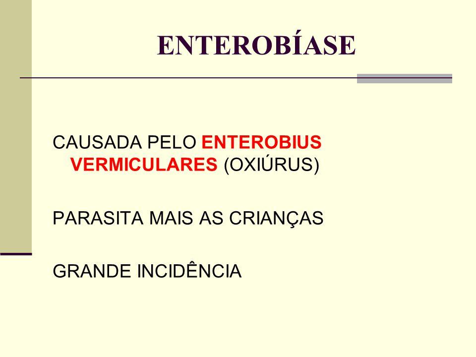 ENTEROBÍASE CAUSADA PELO ENTEROBIUS VERMICULARES (OXIÚRUS) PARASITA MAIS AS CRIANÇAS GRANDE INCIDÊNCIA
