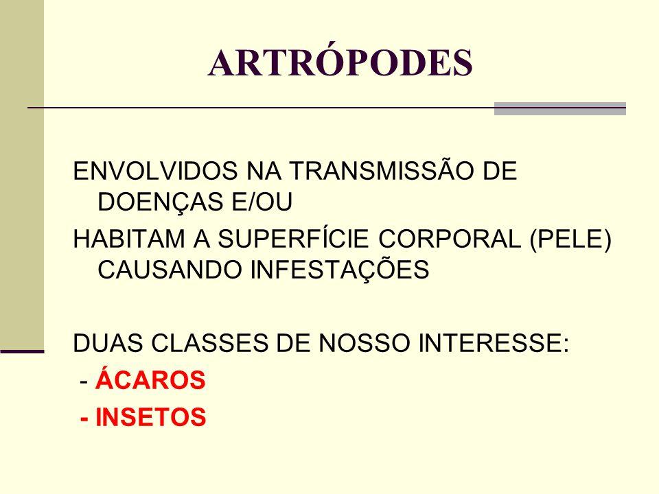 ARTRÓPODES ENVOLVIDOS NA TRANSMISSÃO DE DOENÇAS E/OU HABITAM A SUPERFÍCIE CORPORAL (PELE) CAUSANDO INFESTAÇÕES DUAS CLASSES DE NOSSO INTERESSE: - ÁCAR