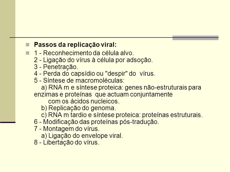 Passos da replicação viral: 1 - Reconhecimento da célula alvo. 2 - Ligação do vírus à célula por adsoção. 3 - Penetração. 4 - Perda do capsídio ou