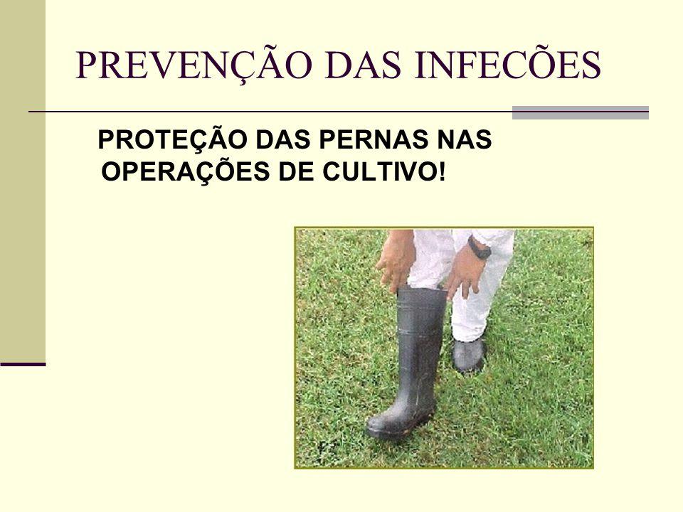 PREVENÇÃO DAS INFECÕES PROTEÇÃO DAS PERNAS NAS OPERAÇÕES DE CULTIVO!