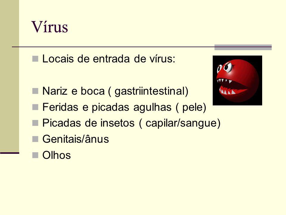 Vírus Locais de entrada de vírus: Nariz e boca ( gastriintestinal) Feridas e picadas agulhas ( pele) Picadas de insetos ( capilar/sangue) Genitais/ânu