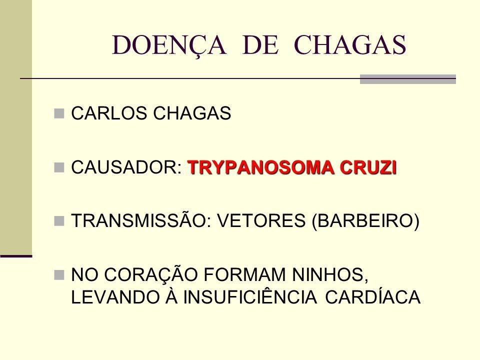 DOENÇA DE CHAGAS CARLOS CHAGAS TRYPANOSOMA CRUZI CAUSADOR: TRYPANOSOMA CRUZI TRANSMISSÃO: VETORES (BARBEIRO) NO CORAÇÃO FORMAM NINHOS, LEVANDO À INSUF