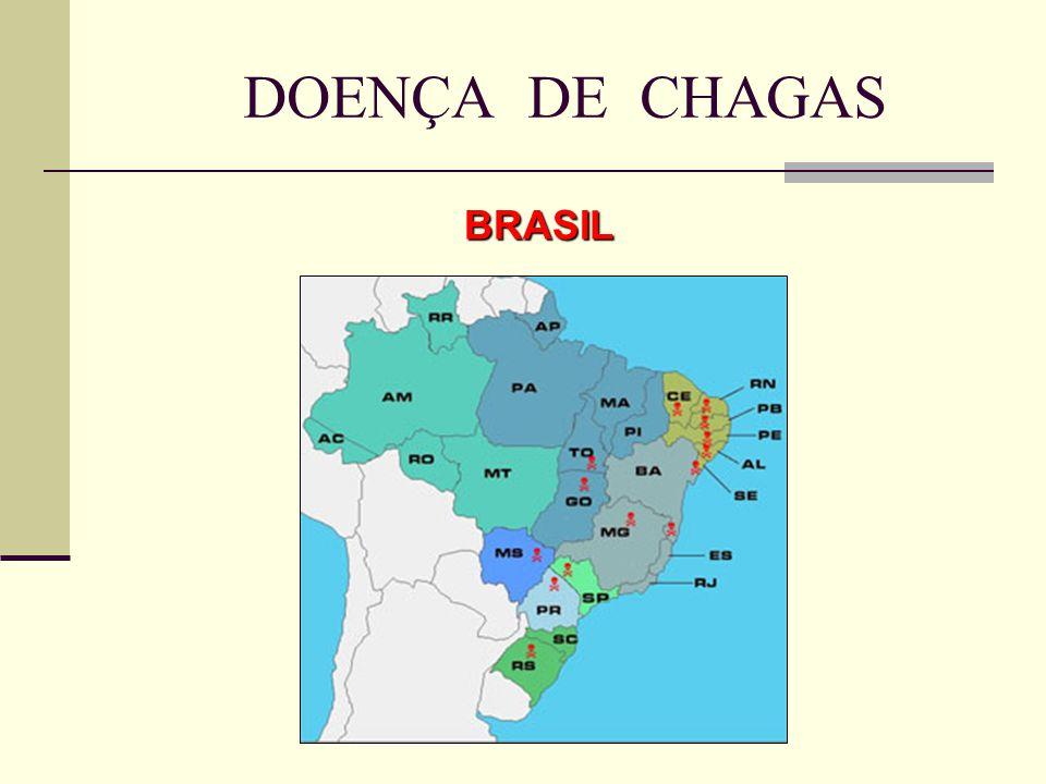 BRASIL DOENÇA DE CHAGAS