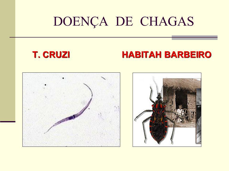 T. CRUZI HABITAH BARBEIRO T. CRUZI HABITAH BARBEIRO DOENÇA DE CHAGAS