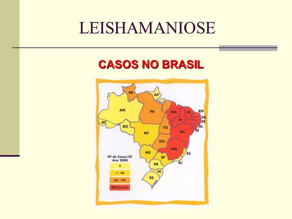 CASOS NO BRASIL LEISHAMANIOSE