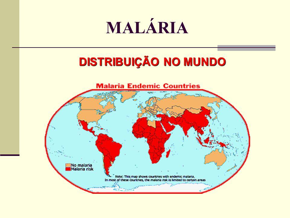DISTRIBUIÇÃO NO MUNDO MALÁRIA