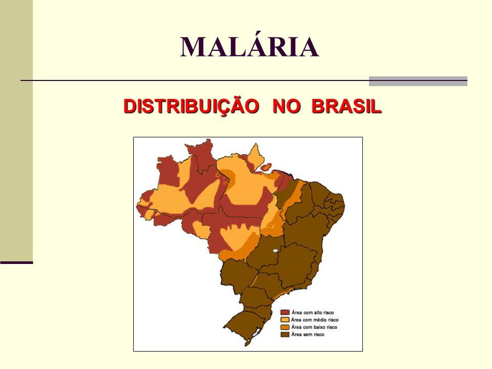 DISTRIBUIÇÃO NO BRASIL MALÁRIA