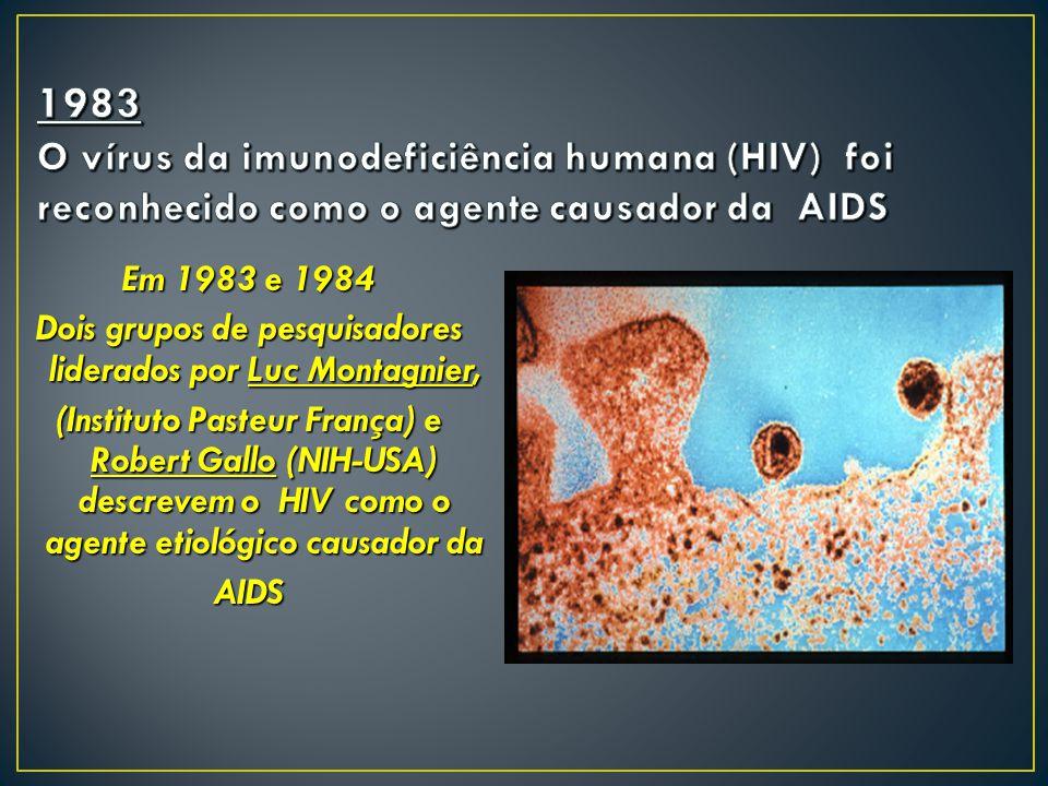 Em 1983 e 1984 Dois grupos de pesquisadores liderados por Luc Montagnier, (Instituto Pasteur França) e Robert Gallo (NIH-USA) descrevem o HIV como o a