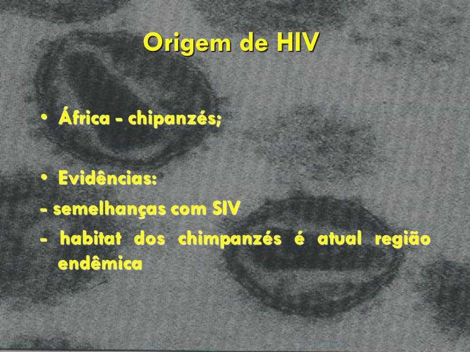 Origem de HIV África - chipanzés;África - chipanzés; Evidências:Evidências: - semelhanças com SIV - habitat dos chimpanzés é atual região endêmica