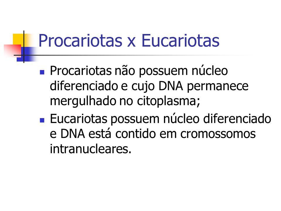 Ciclo Biológico e Hospedeiros Obrigatórios: Só sobrevivem em um hospedeiro; Ex: Leishmania sp.