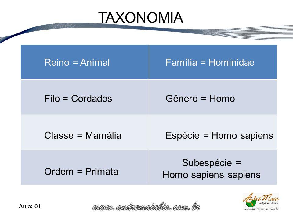 Aula: 01 TAXONOMIA Reino = Animal Filo = Cordados Classe = Mamália Ordem = Primata Família = Hominidae Gênero = Homo Espécie = Homo sapiens Subespécie = Homo sapiens sapiens