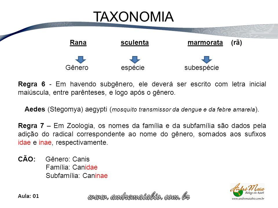 Aula: 01 TAXONOMIA Rana sculenta marmorata (rã) Gênero espécie subespécie Regra 6 - Em havendo subgênero, ele deverá ser escrito com letra inicial maiúscula, entre parênteses, e logo após o gênero.