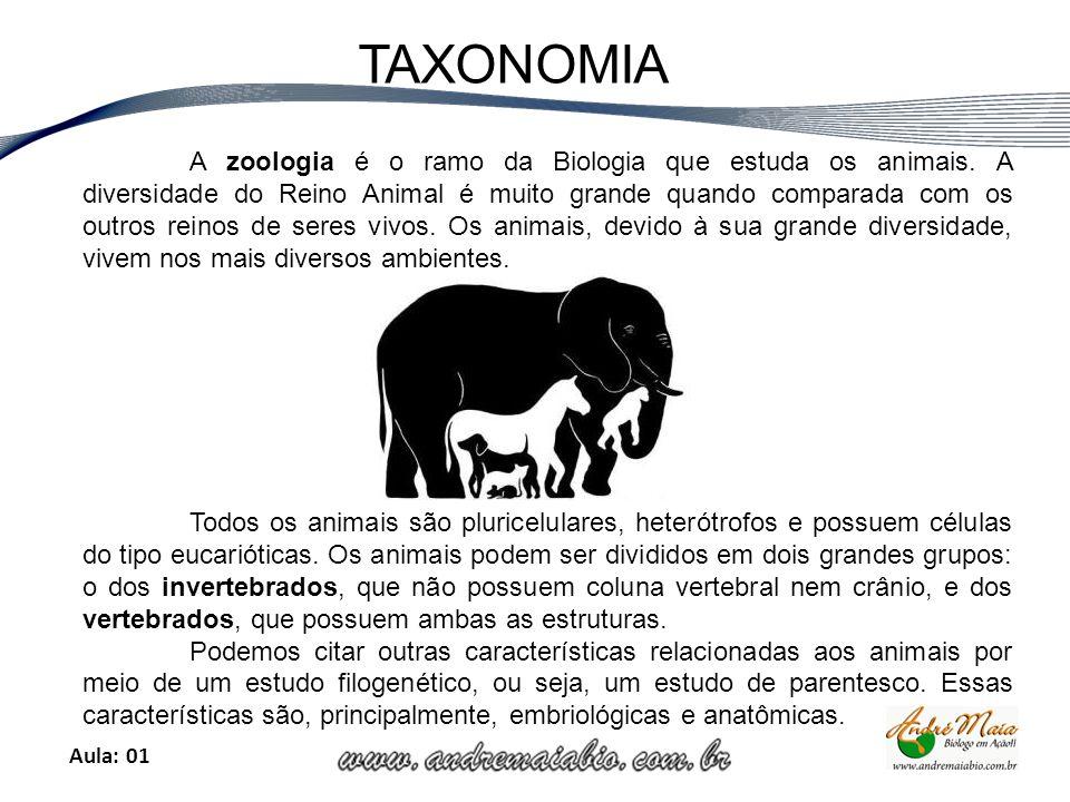 Aula: 01 TAXONOMIA A zoologia é o ramo da Biologia que estuda os animais.
