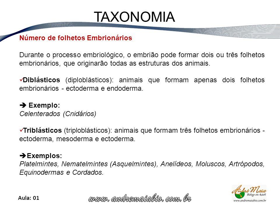 Aula: 01 TAXONOMIA Número de folhetos Embrionários Durante o processo embriológico, o embrião pode formar dois ou três folhetos embrionários, que originarão todas as estruturas dos animais.