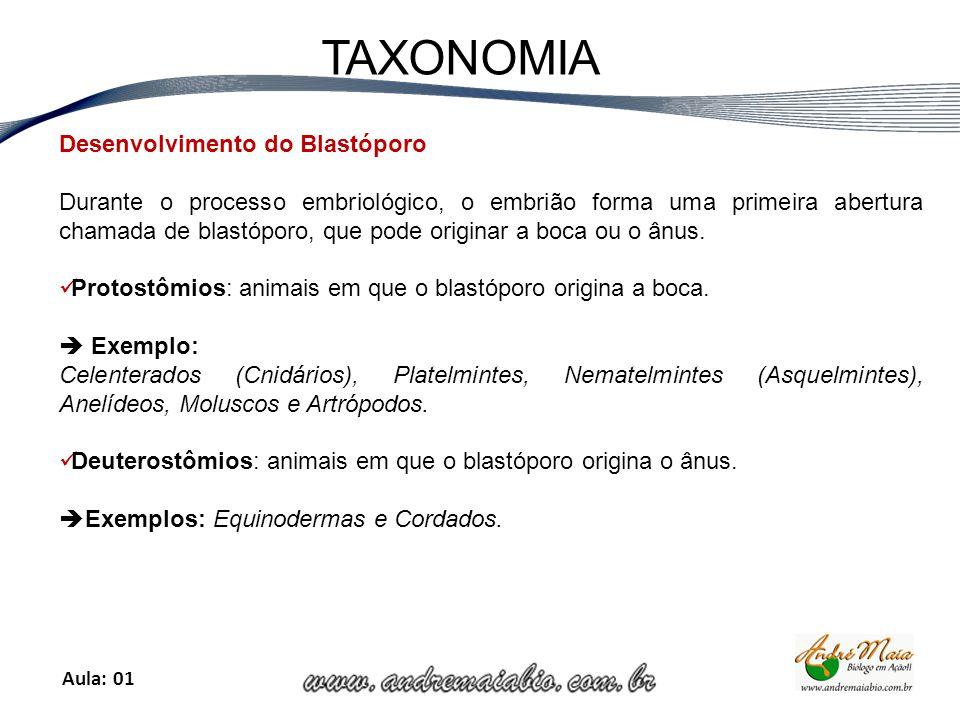 Aula: 01 TAXONOMIA Desenvolvimento do Blastóporo Durante o processo embriológico, o embrião forma uma primeira abertura chamada de blastóporo, que pode originar a boca ou o ânus.