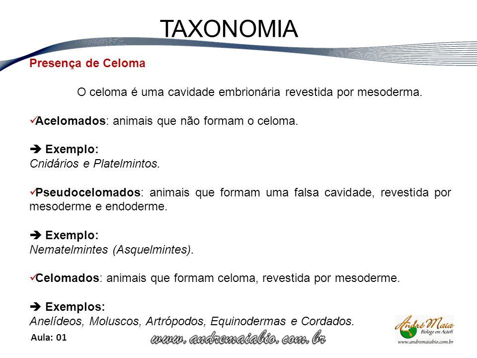 Aula: 01 TAXONOMIA Presença de Celoma O celoma é uma cavidade embrionária revestida por mesoderma.