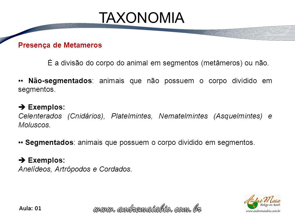 Aula: 01 TAXONOMIA Presença de Metameros É a divisão do corpo do animal em segmentos (metâmeros) ou não.