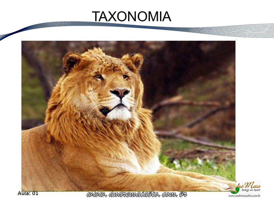 Aula: 01 TAXONOMIA