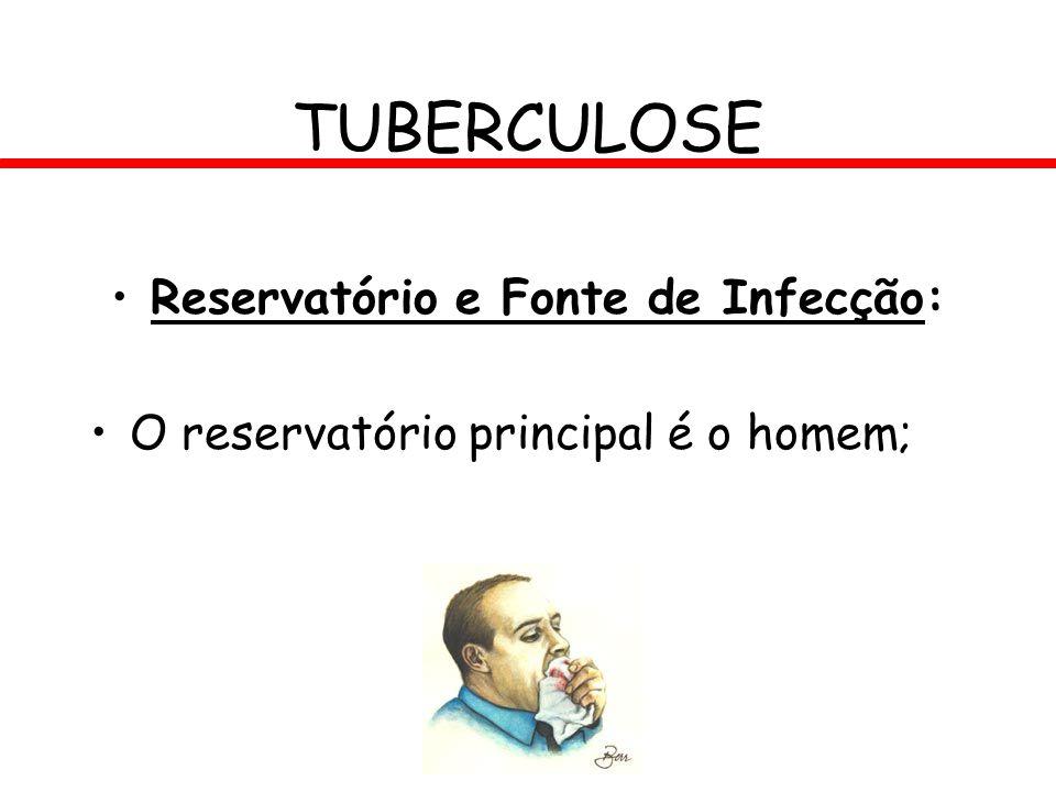 Reservatório e Fonte de Infecção: O reservatório principal é o homem; TUBERCULOSE