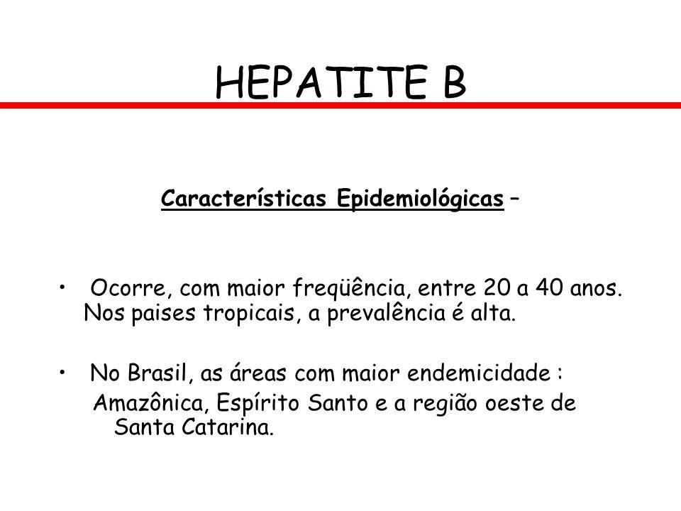 HEPATITE B Características Epidemiológicas – Ocorre, com maior freqüência, entre 20 a 40 anos. Nos paises tropicais, a prevalência é alta. No Brasil,