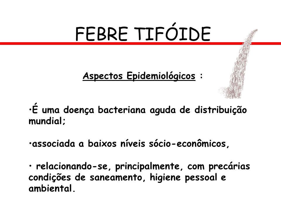 FEBRE TIFÓIDE Aspectos Epidemiológicos : É uma doença bacteriana aguda de distribuição mundial; associada a baixos níveis sócio-econômicos, relacionan
