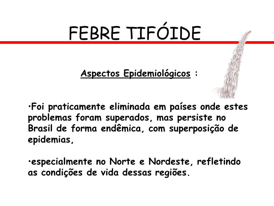 FEBRE TIFÓIDE Aspectos Epidemiológicos : Foi praticamente eliminada em países onde estes problemas foram superados, mas persiste no Brasil de forma en