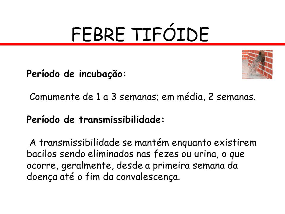 FEBRE TIFÓIDE Período de incubação: Comumente de 1 a 3 semanas; em média, 2 semanas. Período de transmissibilidade: A transmissibilidade se mantém enq
