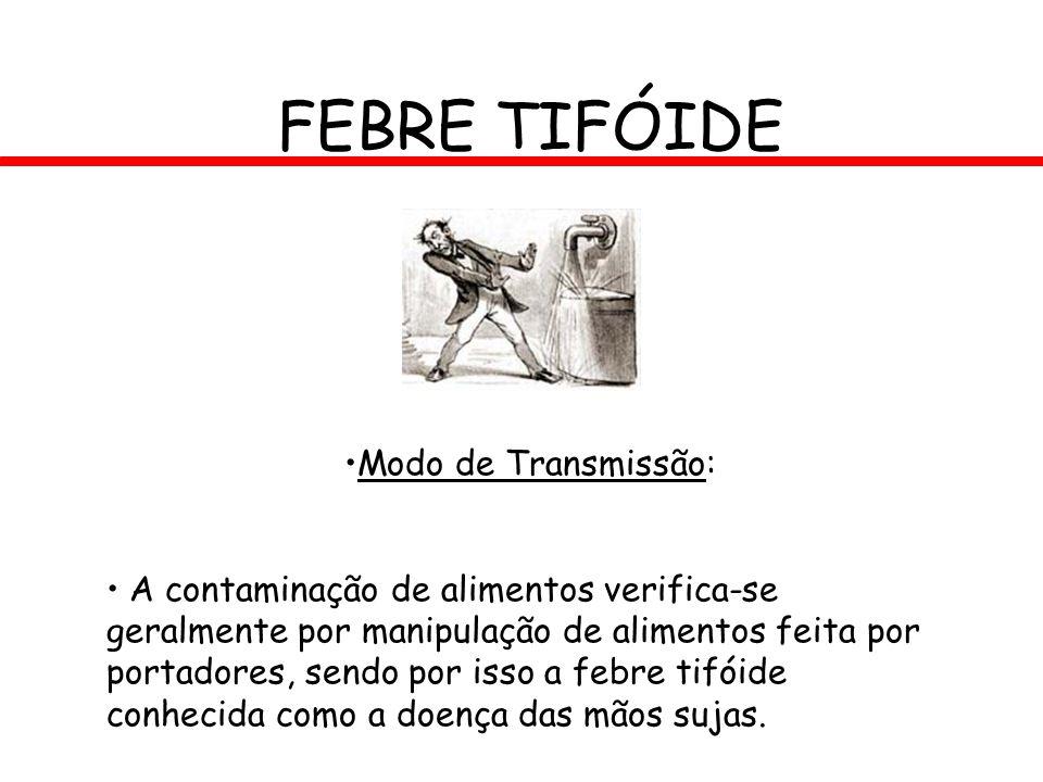 FEBRE TIFÓIDE Modo de Transmissão: A contaminação de alimentos verifica-se geralmente por manipulação de alimentos feita por portadores, sendo por iss
