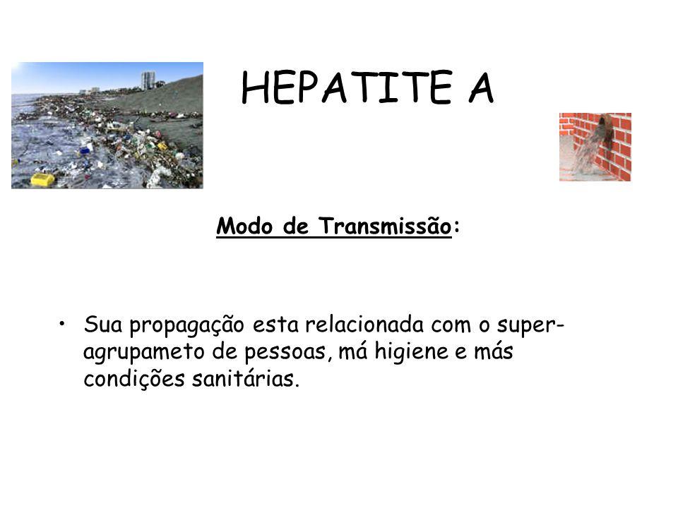 HEPATITE A Modo de Transmissão: Sua propagação esta relacionada com o super- agrupameto de pessoas, má higiene e más condições sanitárias.