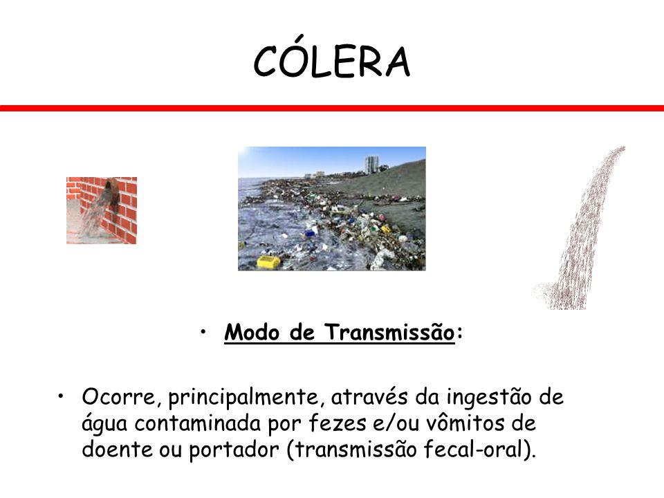 CÓLERA Modo de Transmissão: Ocorre, principalmente, através da ingestão de água contaminada por fezes e/ou vômitos de doente ou portador (transmissão