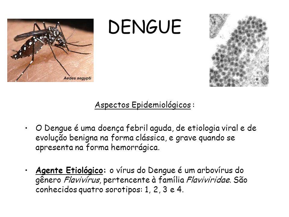 DENGUE Aspectos Epidemiológicos : O Dengue é uma doença febril aguda, de etiologia viral e de evolução benigna na forma clássica, e grave quando se ap